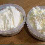 アイスクリームメーカーで作る美味しいレシピ。ブルーベリーアイス&バニラアイス